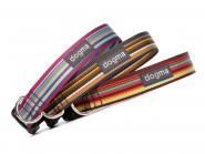 """Nylonhalsband """"dogma stripes"""" 2,5 cm breit"""