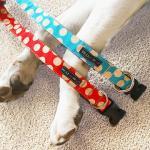 Walk-e-Woo Halsband, Größe XS
