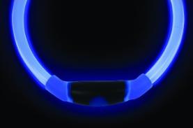 NiteHowl LED Leuchthalsband in blau