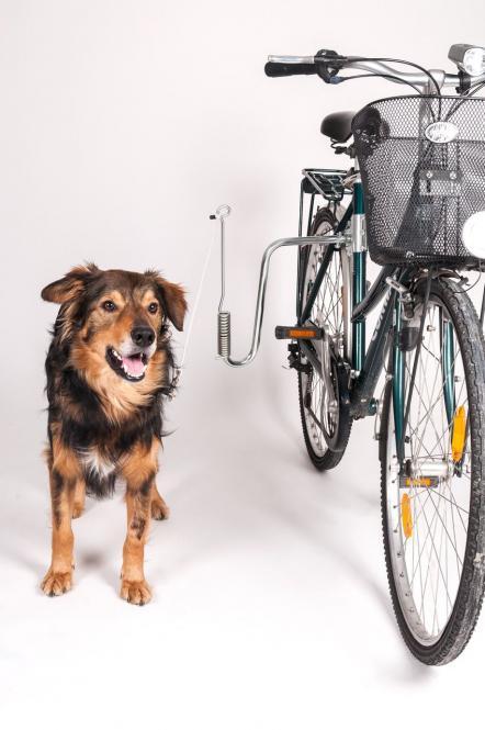 Doggy Guide - Führhalter für Fahrräder